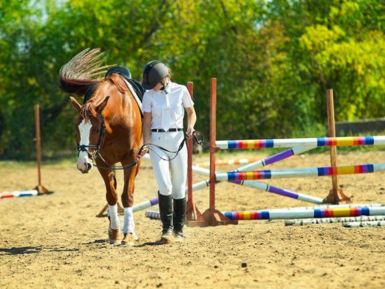 Corsi di equitazione Roma Via Cassia Centro Ippico Durlindana