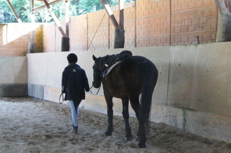 Ippoterapia Equitazione Roma Via di Grottarossa Circolo Ippico Durlindana