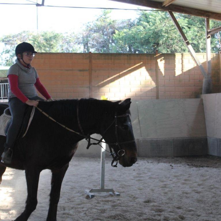 Ippoterapia Equitazione Roma Prima Porta  Circolo Ippico Durlindana