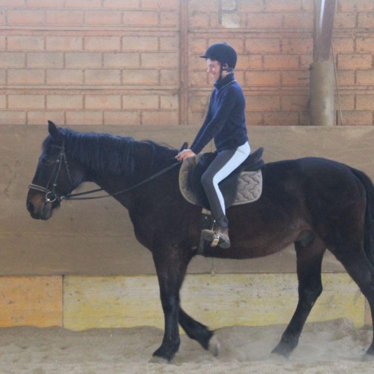Ippoterapia Equitazione Roma Via Della Giustiniana Circolo Ippico Durlindana