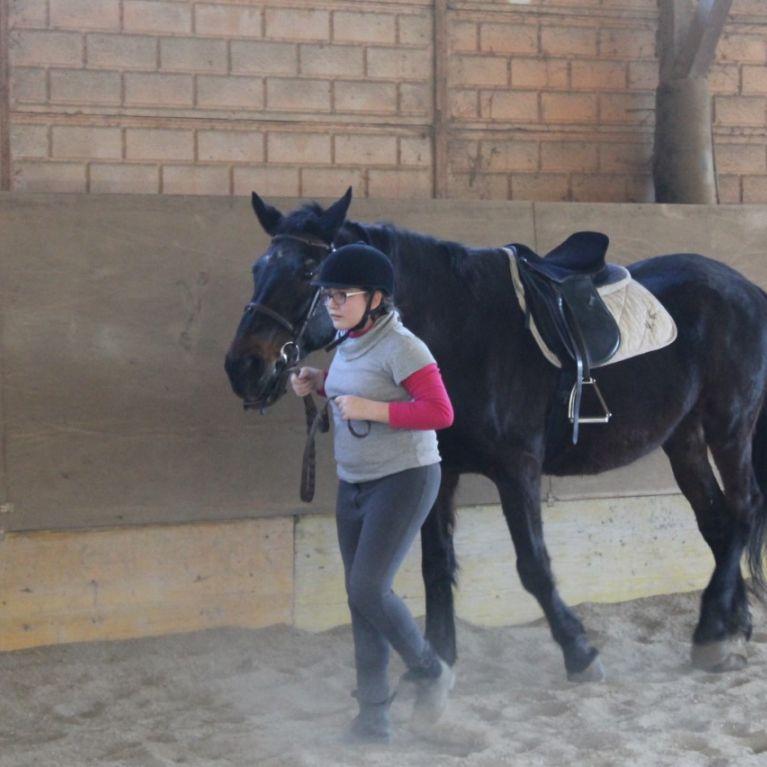 Ippoterapia Equitazione Roma Via Flaminia Nuova Circolo Ippico Durlindana
