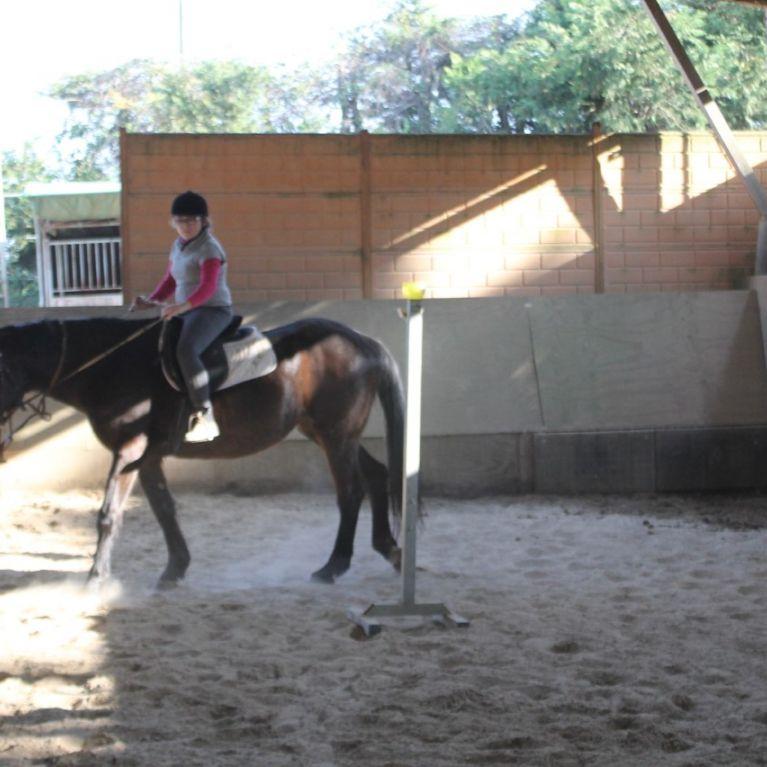 Ippoterapia Equitazione Roma Labaro  Circolo Ippico Durlindana